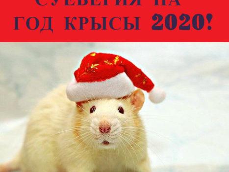 Приметы на Новый год 2020, которые сулят большое счастье и богатство