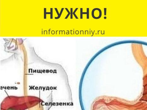 Миф или нет: два литра воды в день